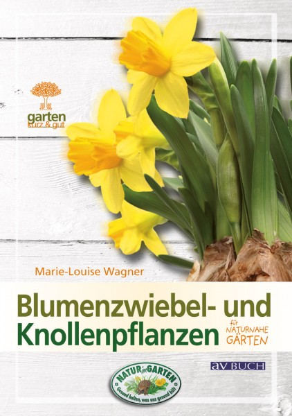 Blumenzwiebel- und Knollenpflanzen